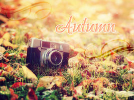 [Wallpaper #2] Autumn by sandrareina