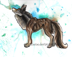 ::Howling wolf watercolor:: by Ashenee