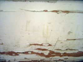 Chipped Paint 05 by stockimagine