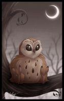 Fluffy Owl by DolphyDolphiana