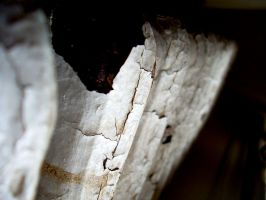 Cracked. by Littography