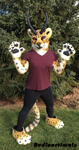 Cheetah Partial by Radioactimals