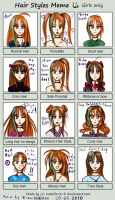 Hair syiles meme ANIA by krow000666