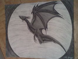 Dragon - In The Moonlight by Roxas-Number-XIII