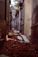 autumn at Pere Lachaise by Suryakami