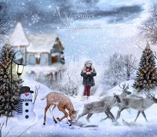 Christmas Story by annemaria48