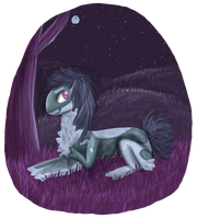 Songs Of The Night by Armzulite