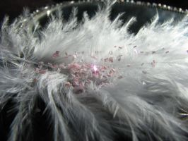 Feather With Glitter Stock 2 by MissyStock