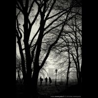 Tree and three by audeladesombres