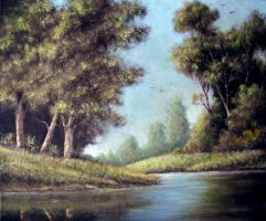 Landscape and water oil paint. by Boias