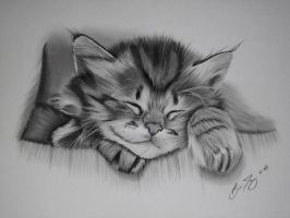 Cat Nap by golfiscool