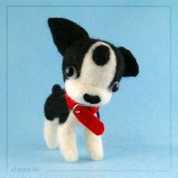 Boston Terrier - side by mymlansdotter