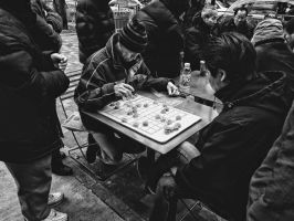 Playing Xiangqi by dariuszwozniak