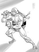 Turtles in progress 2 - MIKE by Santolouco