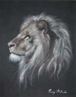 lion by lilalo-art