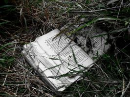 lost book by AMON-1