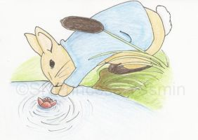 Peter Rabbit by harisdra