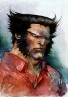 watercolour logan by rogercruz