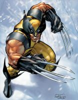 Wolverine color by sanjun