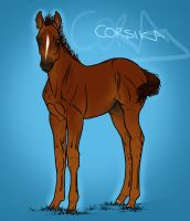 Corsika by sealle