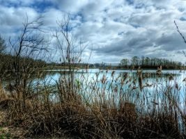 Backlight Lake No11 HDR by Risen-From-The-Ruins