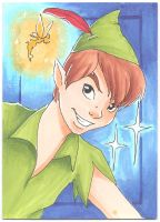 Peter Pan- Art Card by Faerytale-Wings