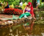 Ariel Mermaid by Selhin