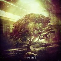 Forester Cover by abigbat