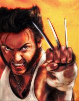 Wolverine by vicariou5