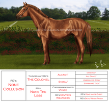 RDS None Collusion by Jullelin