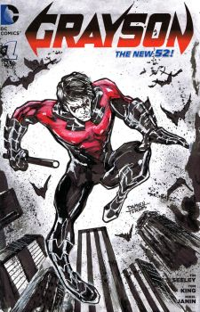 Nightwing Sketch Cover Commission by dtor91