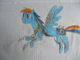 Rainbow Dash The Storm Congerour by LacitheHunter