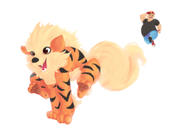Gift - Wait, Arcanine! Come Back! by katiepox