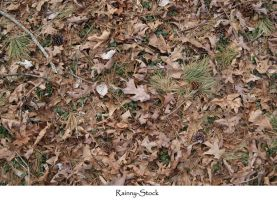 ground texture- 1 by Rainny-Stock