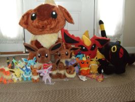 My Eevee Plush Collection by Itachislilgirl