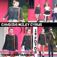 candids miley cyrus by nickieditions
