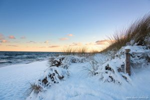 Snowy Beach by Dave-Derbis