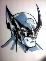 Wolverine Sketch by jey2dworld