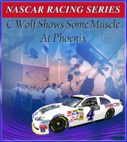 Clawd Wolf wins the Camping World 500 by Dorothy64116
