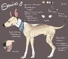 Samiel Reference by BlOFREAK