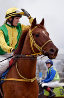 Horse Racing 147 by JullelinPhotography