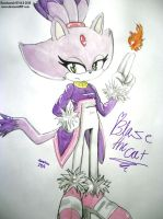 1: Blaze the cat by SashaStub