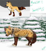 Further improvement by NAMEY-D0G