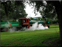 Rides in Action Entry 2 by WDWParksGal-Stock