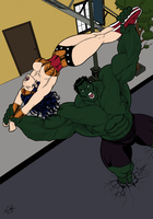 Hulk vs Wonder Woman by fabio018