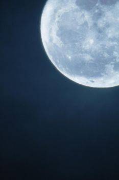 mother moon by muranyi