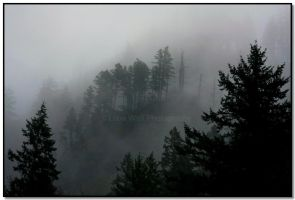 Misty Mountains by LoneWolfPhotography