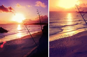 Sunset by ornie
