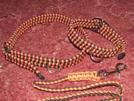 Leash and Collars (black and orange) by DenaliVonChrystshun