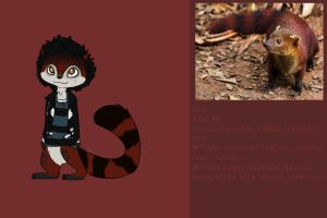 REF: Sid - GIFT by Amy1Jade2Wendy3